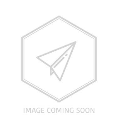 SXT Light Plus V e Scooter 8Zoll 500W 36V 10.5A anthrazit mit Strassenzulassung für AT/DE
